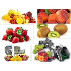Μηχανήματα Επεξεργασίας Φρούτων